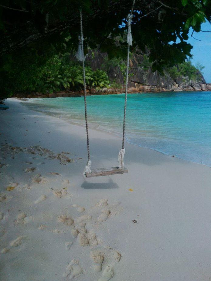 Best swing in the world?